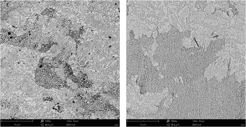 Fig. 3-2 Microstructure of high carbon low alloy steels after normalized and tempered (a)1#;(b)2#