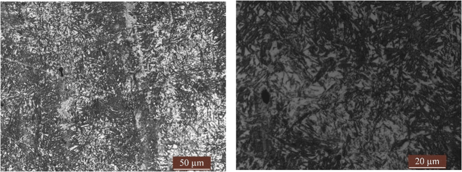 Fig.3-1 Microstructure of high carbon low alloy steels in different heat treatment process (g)(h)4#