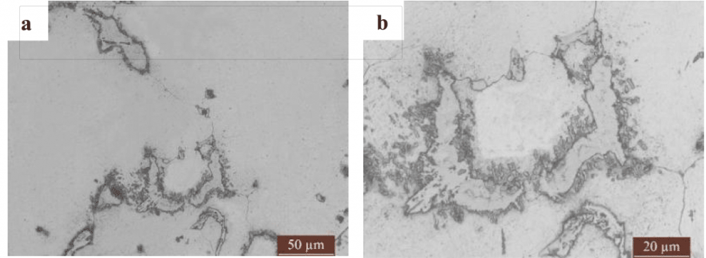 Fig.4-3 Microstructure of high manganese steel matrix composite liner plates